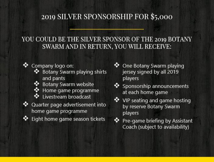 Silver Sponsorship Image